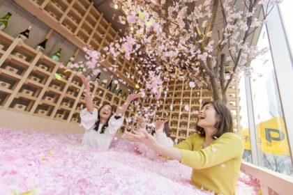 圧巻!120万枚の花びらに埋もれる進化形お花見体験が3月22日スタート@表参道